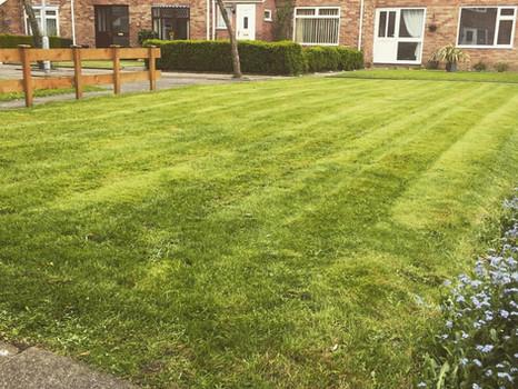 Garden Maintenance Cwmbran
