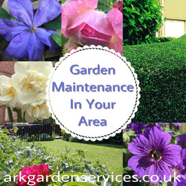 Garden maintenance in your area