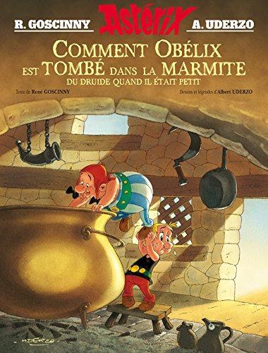 Comment Obelix est tombe dans la marmite du druide