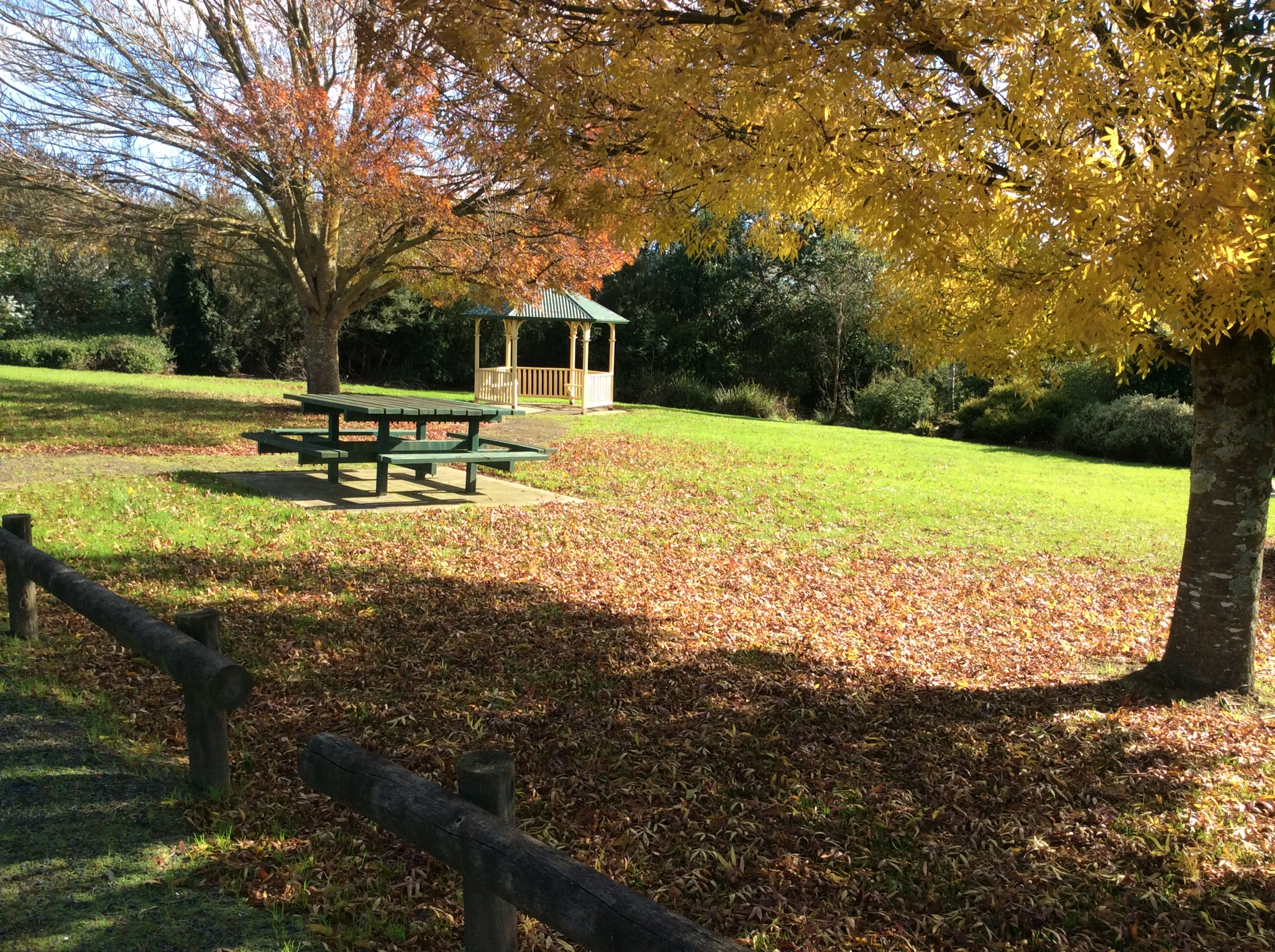 Bena Hall - McGrath Park