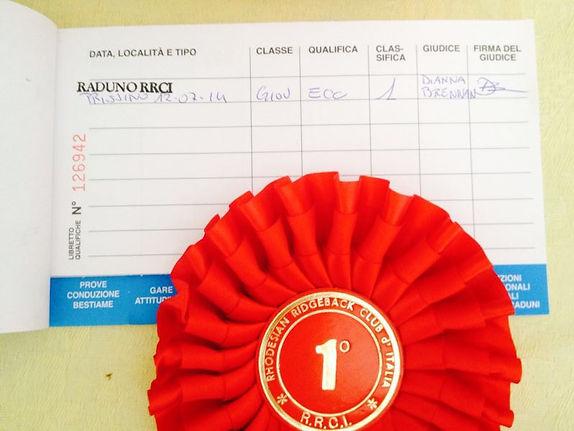 Rhodesian Ridgebacks Italian Kennel Club Winner