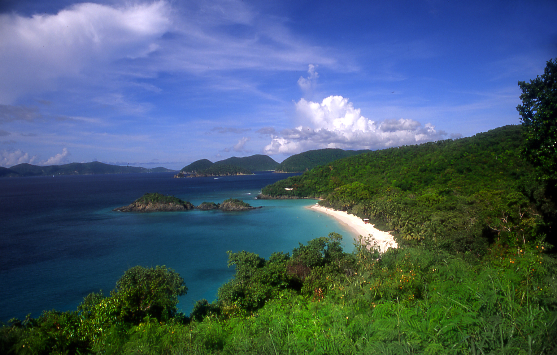 Trunk Bay Vista, St. John.jpg