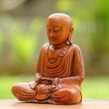 Практика дхараны и дхьяны. Краткое руководство пользователя.