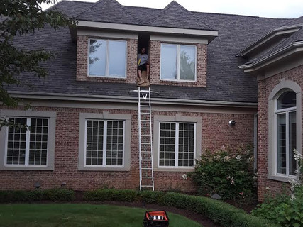 Bat Exclusion Job in Rochester Hills