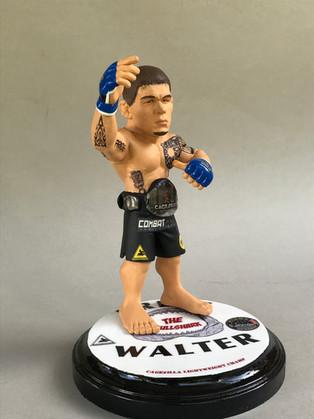 MMA Custom