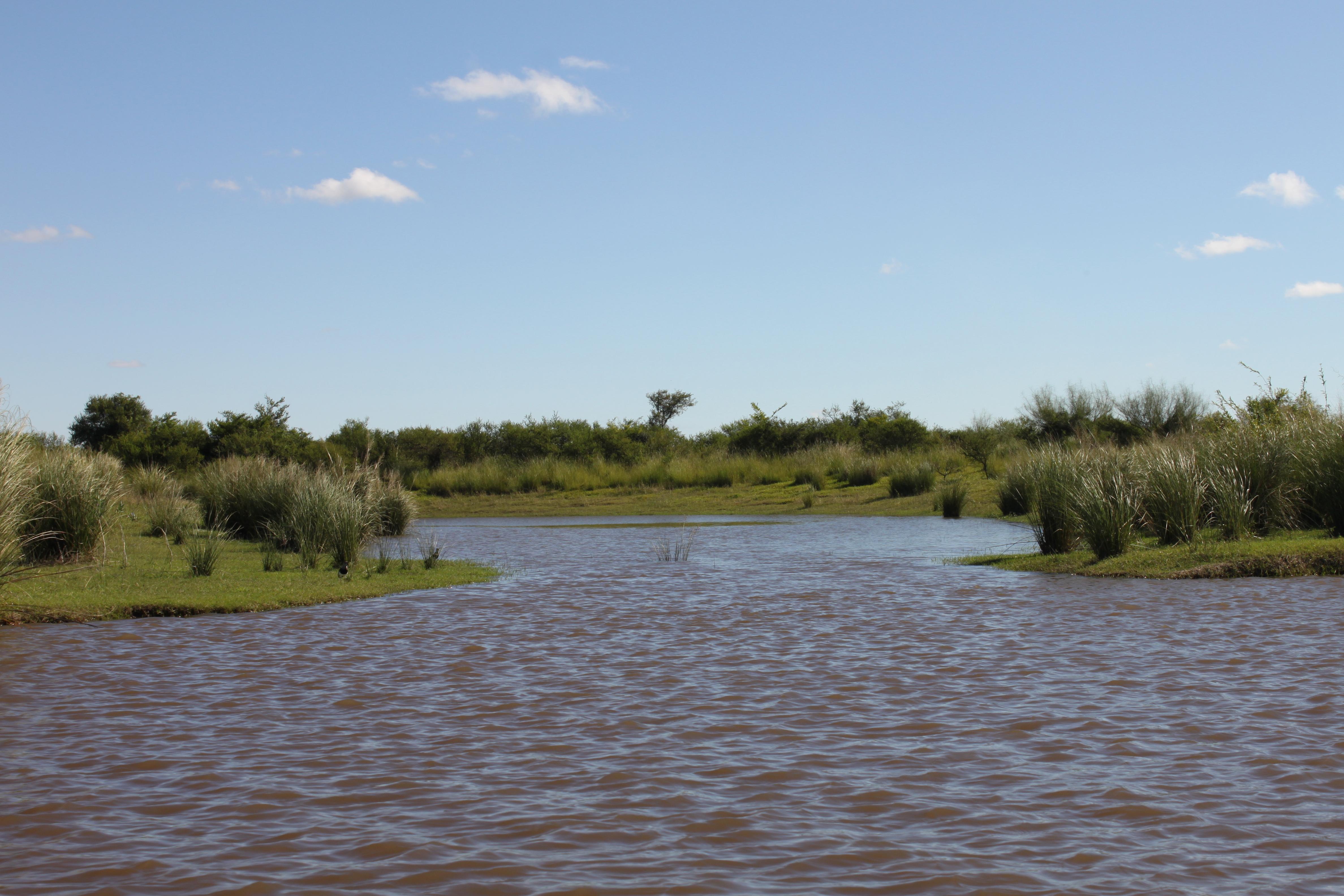 Portal Río Corriente