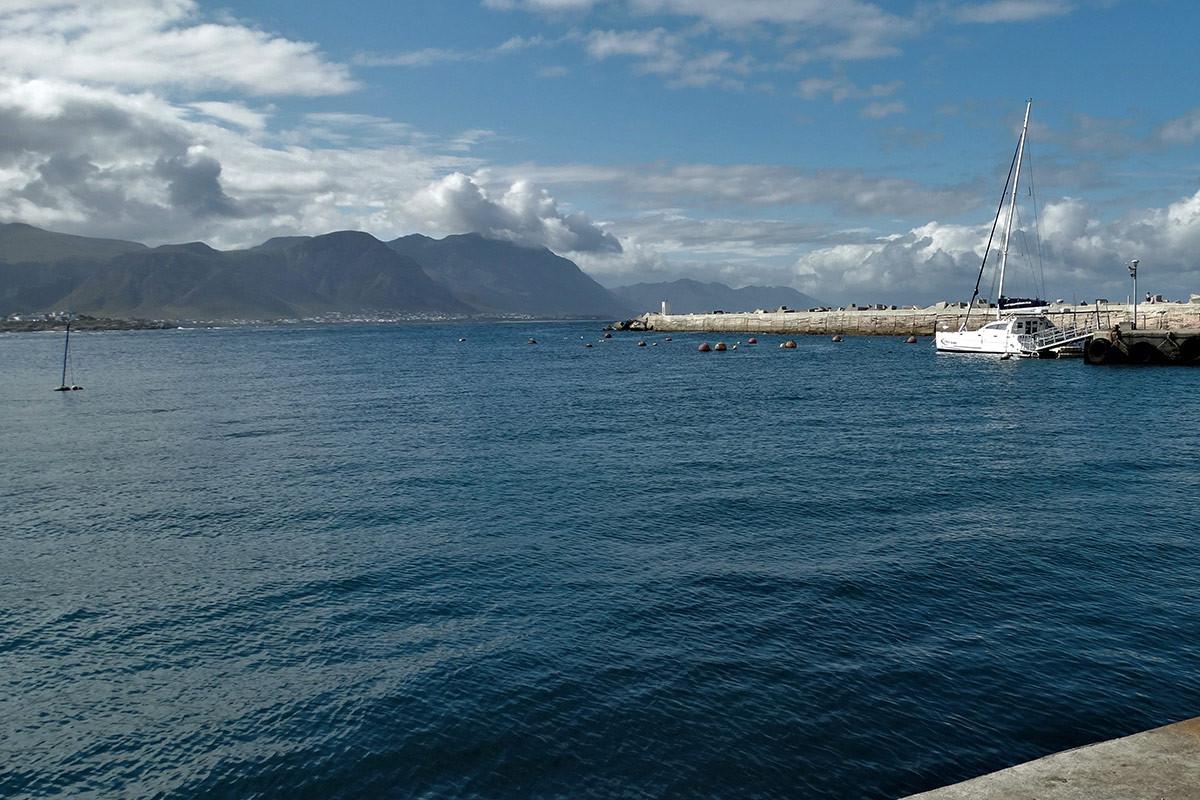Harbour9.jpg
