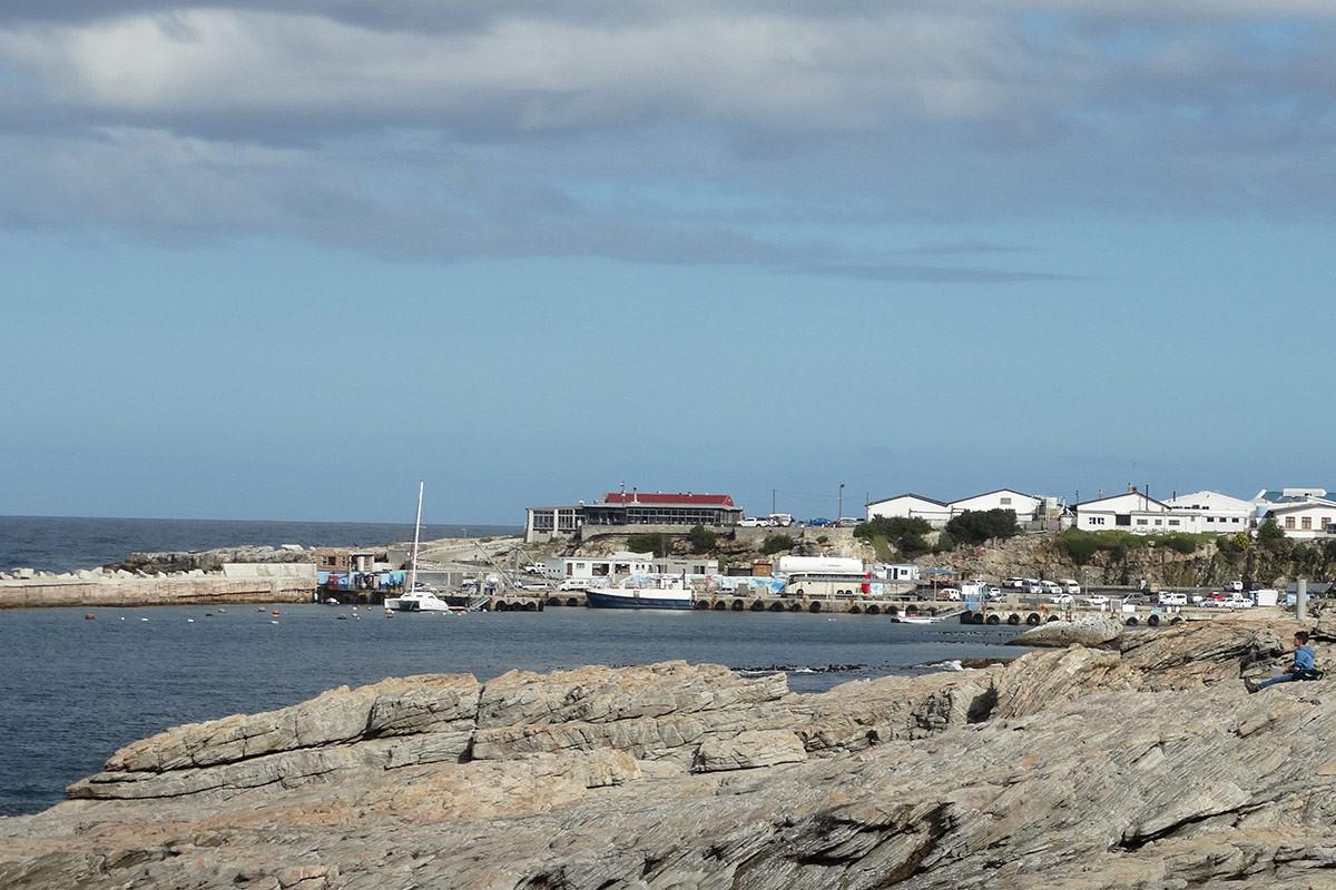 Harbour8.jpg