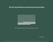 American Pesticides