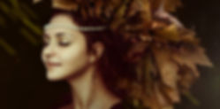 autumn-1773794_1920.jpg