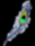peacock-feather-163651_1280_edited_edite