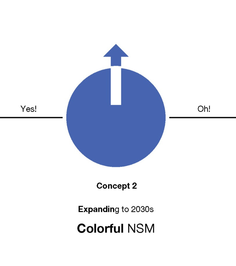 3 concepts for NSM