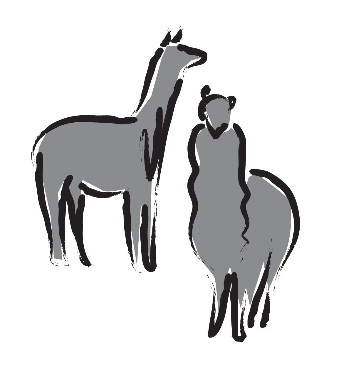 Alpaca illustration