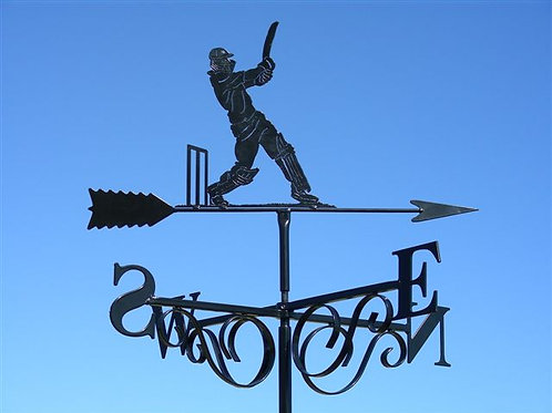The Cricket Batsman