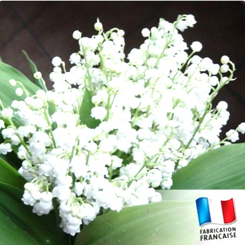 Pot de confiture Muguet