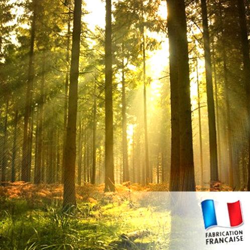 Bonbonnière bougie Ballade en forêt
