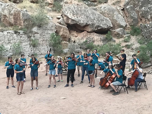 Pay for Senior Tooele Valley Youth Symphony Tuition