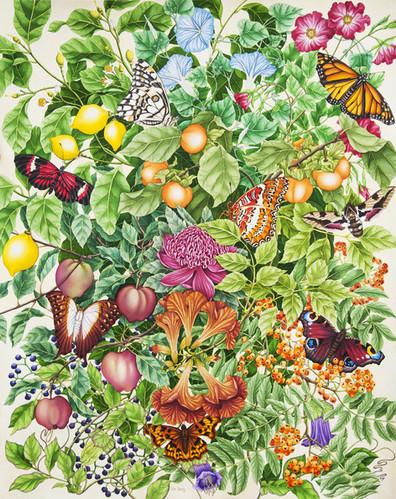 Flowers, fruit and butterflies