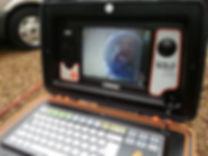 CCTV Drain Survey on a Laptop
