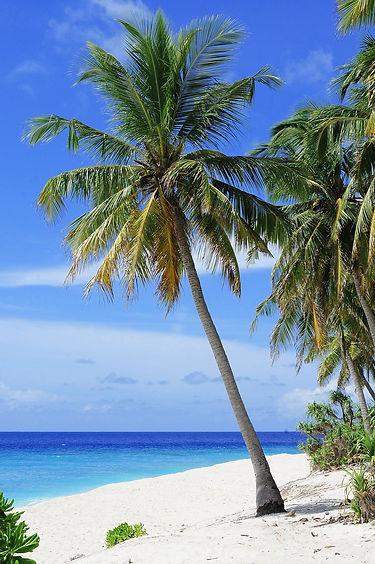 atoll-2178747_1920.jpg