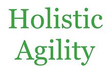 Holistic Agility Logo.png