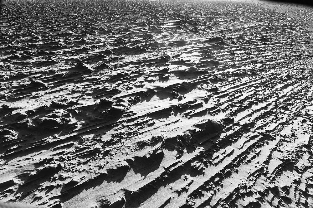 最大瞬間風速40m/sが駆け抜けた砂丘