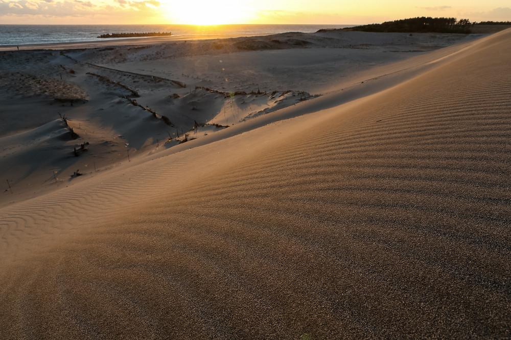 防潮堤の斜面と夕日