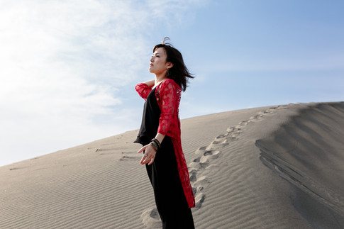 砂の女 The Woman in the Dunes