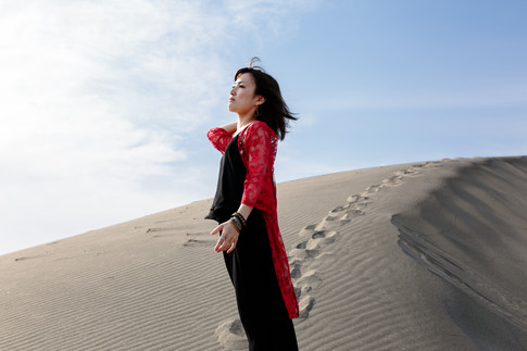 砂の女 The Woman in the Dunes