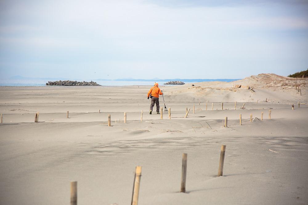 砂丘を守る人