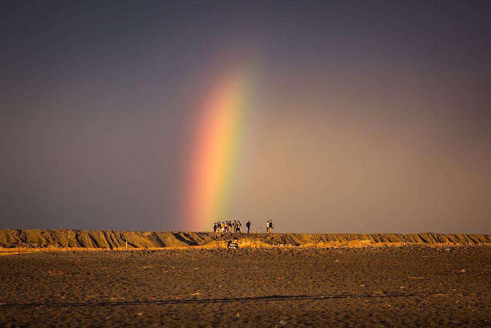 防潮堤を軽く跨ぐ虹
