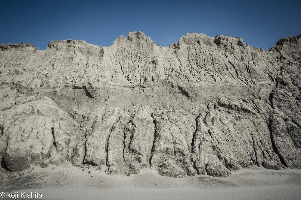 中田島砂丘の養浜地