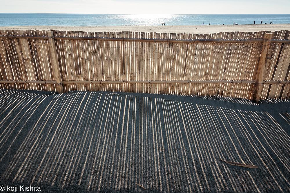 堆砂垣の長い影