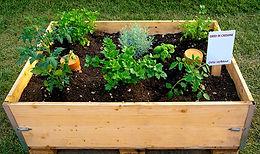 Urban Gardening Box