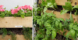 Creating a Place of Peace in your Garden