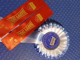 Stiubhards Qualified for CRUFTS 2016