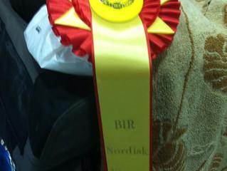 Stiubhard win @ Nordic Winner 2014
