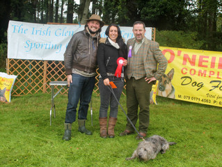Dodger Wins Best of Breed and Dog of the Day @ Irish Sporting Glen of Imaal Clubs Annual Show