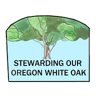 Oak logo white sarah menke_edited_edited.png