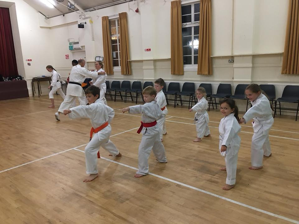 ESKA Karate Club in Redbourn Vilage Hall