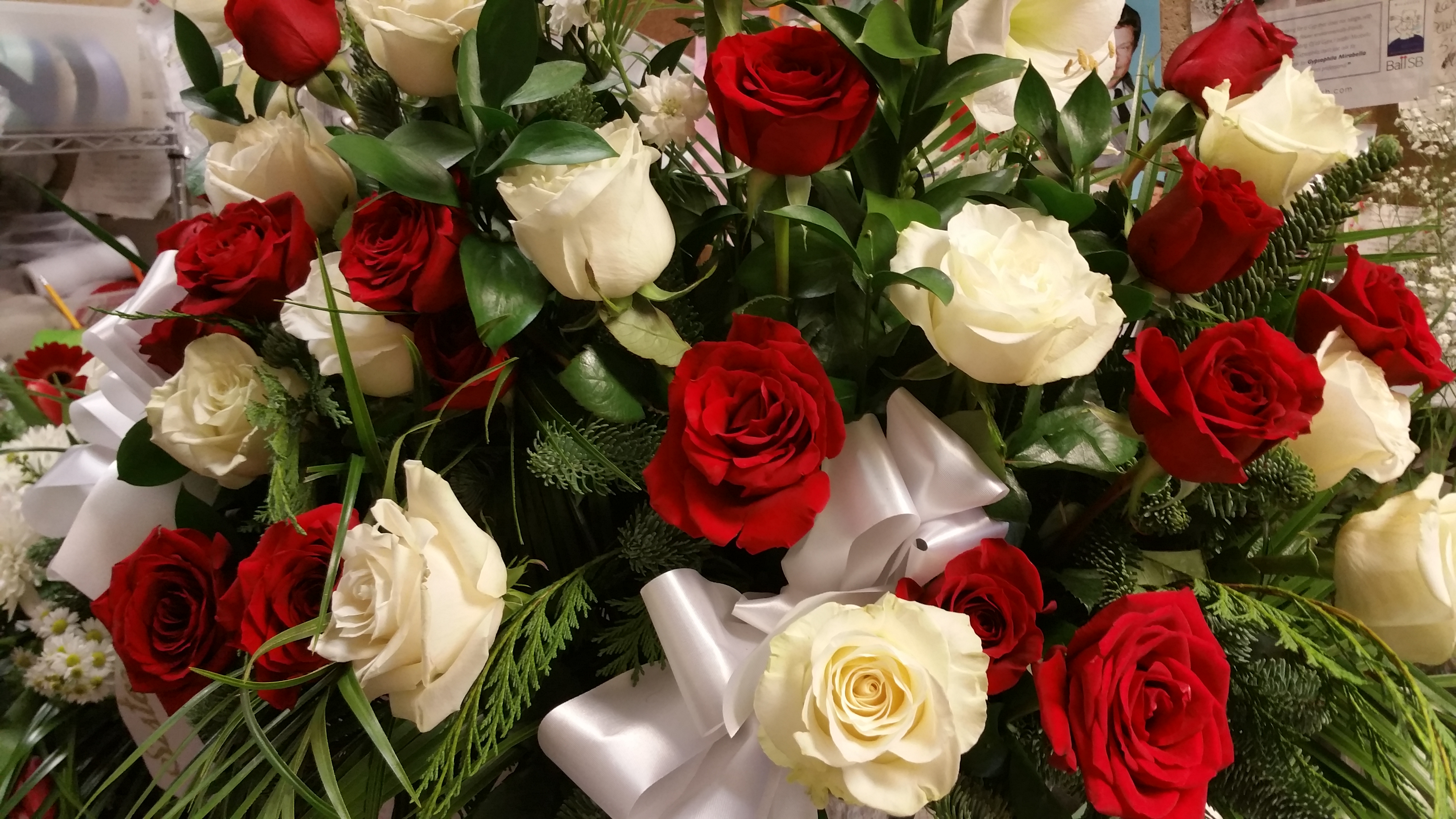 2) Red & White Basket Roses $250.00
