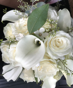 Whites and Seeded Eucalyptus