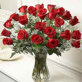 Two Dozen Long Stem Red Roses Valentines
