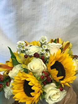 Sunflowers and Cream