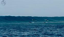 серфинг на Мале атоллах