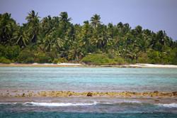 рифовая отмель