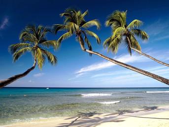 Карибская сёрф-сказка. Это Барбадос, детка!