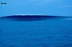 большие волны на Сиаргао