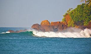 школа серфинга Шри-ланка