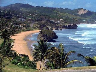 серф кэмп на острове Барбадос, серфинг Барбадос, серф лагерь Барбадос, обучение серфингу Барбадос, школа серфинга Барбадос